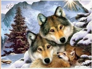 """Набор алмазной мозаики """"Волки с волчонком"""""""