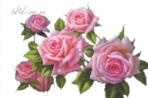 """Набор алмазной вышивки """"Нежно-розовые розы"""""""