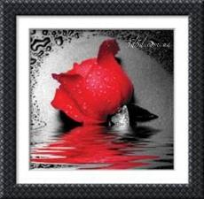 """Набор алмазной вышивки """"Роза красная"""""""