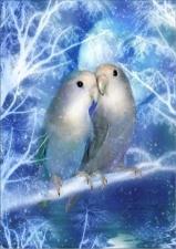 """Набор алмазной мозаики """"Влюбленные попугайчики"""""""
