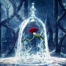 """Набор алмазной мозаики """"Роза под стеклом"""""""