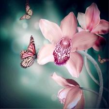 """Набор алмазной мозаики """"Орхидеи на темном фоне"""""""
