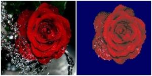 """Набор алмазной мозаики """" Роса и роза"""""""