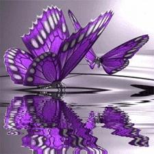 """Набор алмазной мозаики """"Две лиловые бабочки над водой"""""""