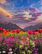 """Набор алмазной вышивки """"Долина цветов"""""""