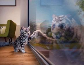 """Набор алмазной мозаики """"Котенок - Тигр"""""""