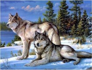 """Набор алмазной мозаики """"Волки. Верность"""""""