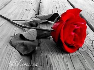 """Набор алмазной вышивки """"Одна красная роза"""""""