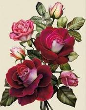 """Набор алмазной вышивки """"Бархатная роза"""""""