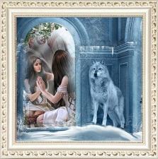 """Набор алмазной вышивки """"Девушка и волк"""""""