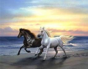 """Набор алмазной вышивки """"Две лошадки на берегу"""""""