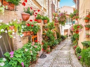 """Набор алмазной мозаики """"Европейская улочка в цветах"""""""