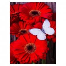 """Набор алмазной вышивки """"Красные цветы и бабочка"""""""
