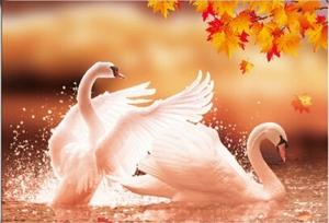 """Набор алмазной мозаики """"Лебеди в осенних листьях"""""""