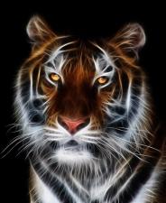 """Набор алмазной мозаики """"Огненный тигр"""""""