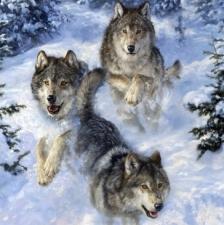 """Набор алмазной мозаики """"Стая волков зимой"""""""
