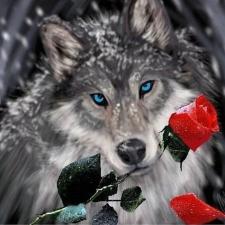 """Набор алмазной мозаики """"Волк с розой"""""""