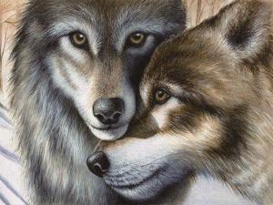 """Набор алмазной мозаики """"Волки. Двое"""""""