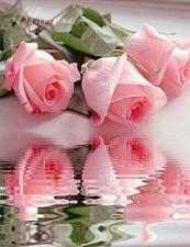 """Набор алмазной вышивки """"Розы в отражении"""""""