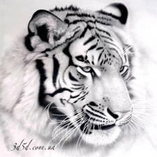 """Набор алмазной вышивки """"Белый тигр"""""""