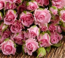 """Набор алмазной мозаики """"Нежные розовые розочки"""""""